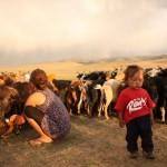Elise apprend à traire les chèvres au milieu de ce magnifique décor. Et après les chèvres ce seront les vaches.