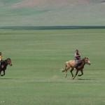 Naadam - Arrivée de la course de chevaux